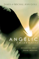 Angelic Encounters - Book