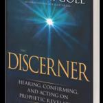 The Discerner book