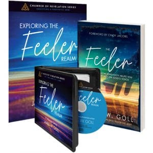 Exploring the Feeler Realm Curriculum Kit