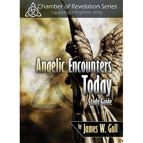angelic encounters today study guide
