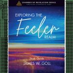 Exploring the Feeler Realm