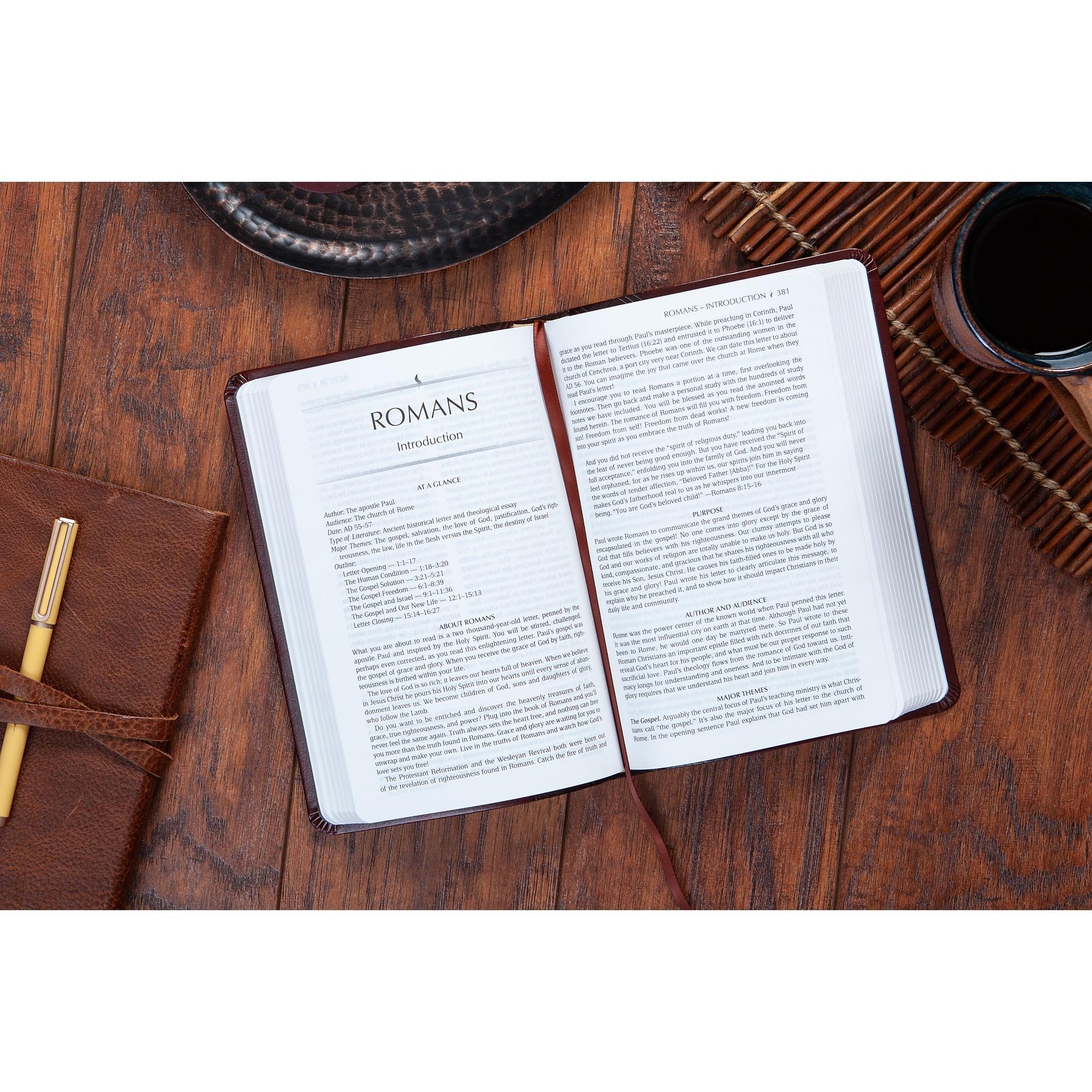 TPT Bible Romans
