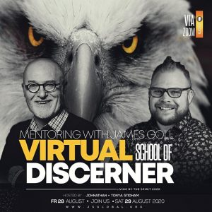 Virtual School of the Discerner