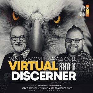 Virtual School of the Discerner