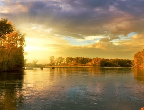 Flowing in the River of God